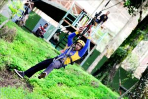 outbound flyingfox