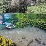 Merasakan Sensasi Berenang di Sumber Sirah Malang