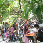 Wisata Di Malang Yang Mendidik Untuk Didatangi