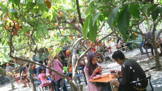 Wisata Di Malang Yang Mendidik Harus Untuk Didatangi